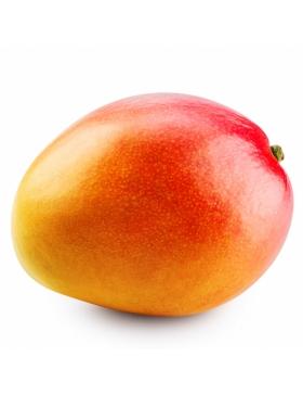 Mangue 1 pièce