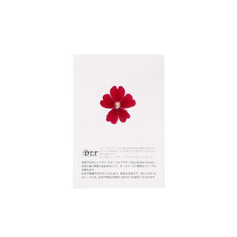 Fleurs séchées Verveine Rouge 50 unités