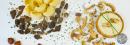 Riz, Polenta & Pâtes