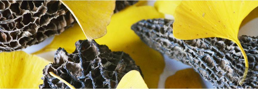 Champignons séchés et marrons - Koros.ch - Épicerie Fine Genève