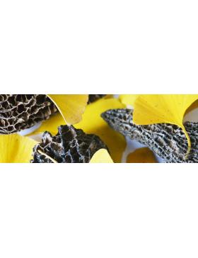 Champignons & Marrons