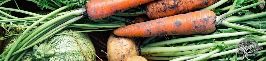 Panier de Légumes à domicile - Genève - Epicerie Fine en ligne Koros